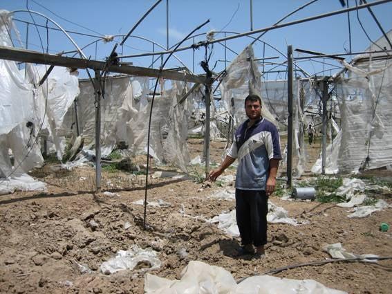 Exodus from Gaza: A photo montage - Tom Gross