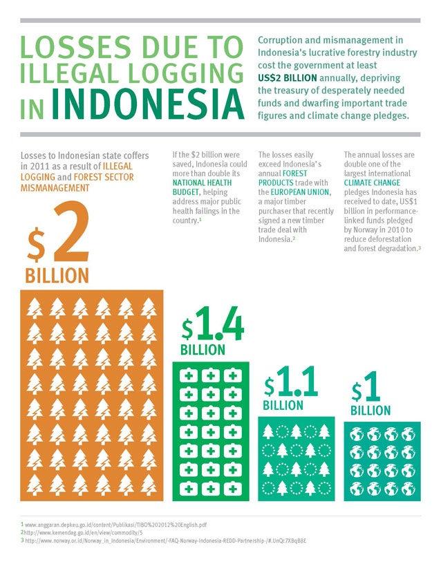 Illegal Logging in Indonesia - Infographic