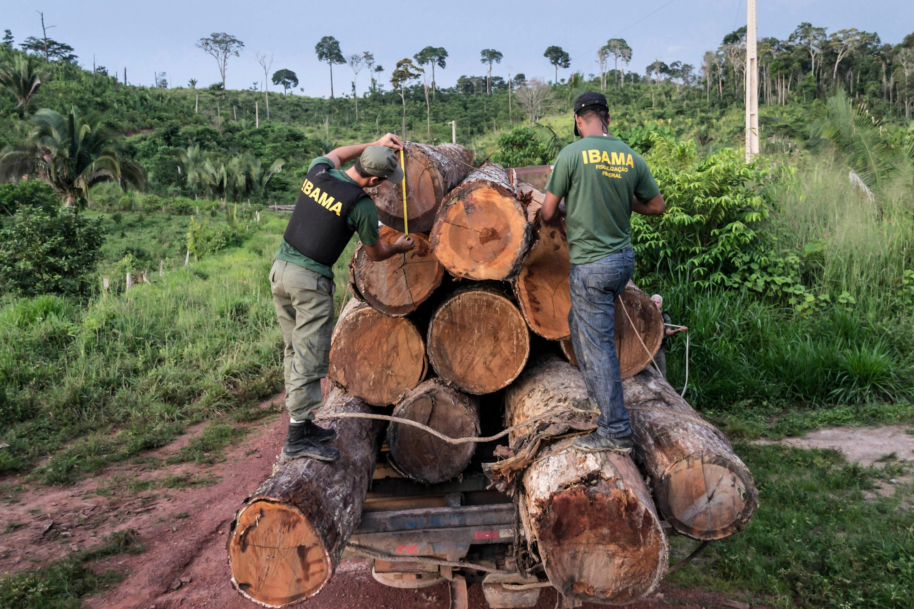 Brazil: Amazon Penalties Suspended Since October | Human Rights Watch