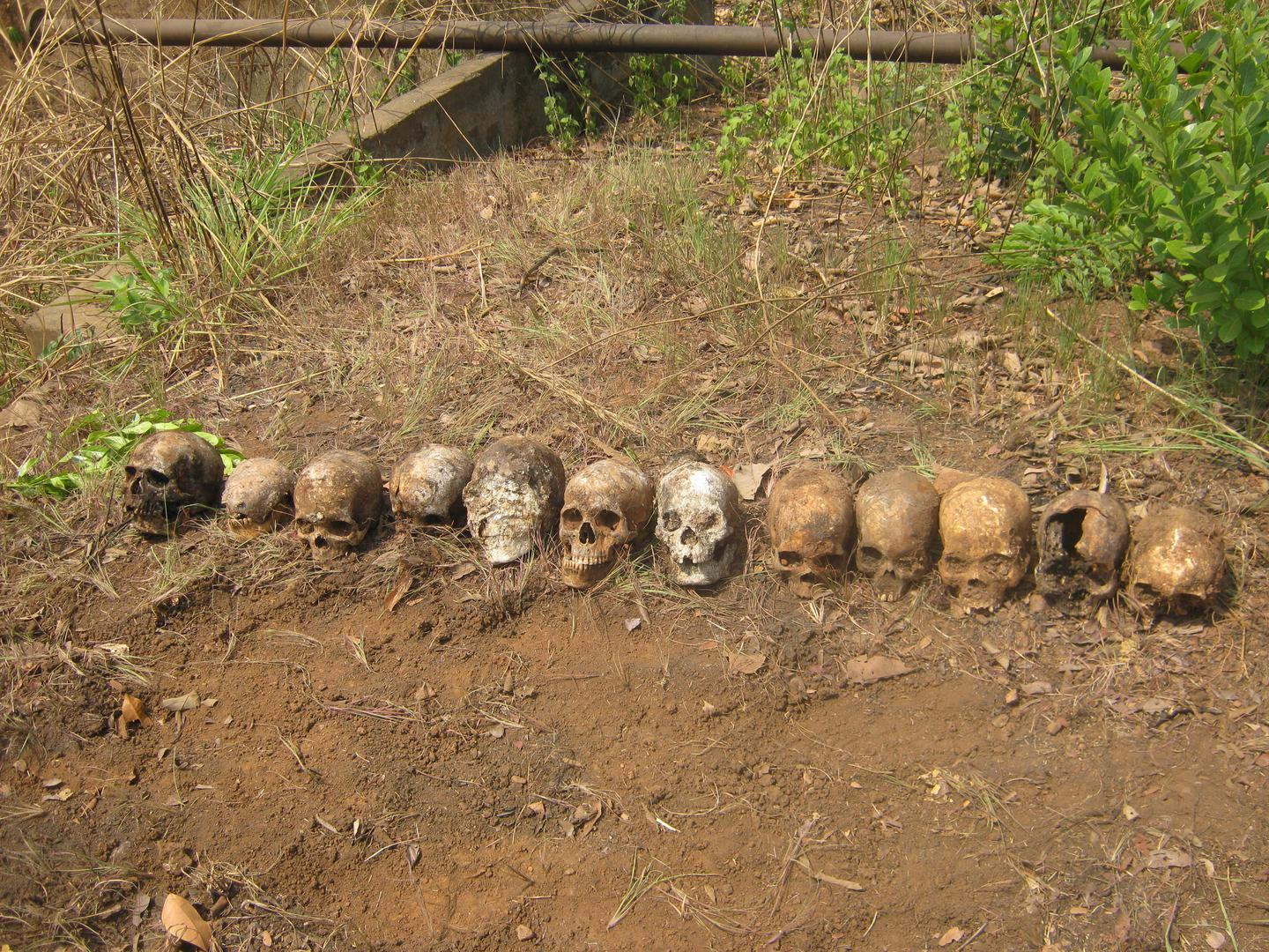 Twelve skulls discovered in a mass grave in February 2016 near a peacekeeping base in Boali, Central African Republic. The victims are believed to be individuals who were summarily executed by Republic of Congo peacekeepers on March 24, 2014.