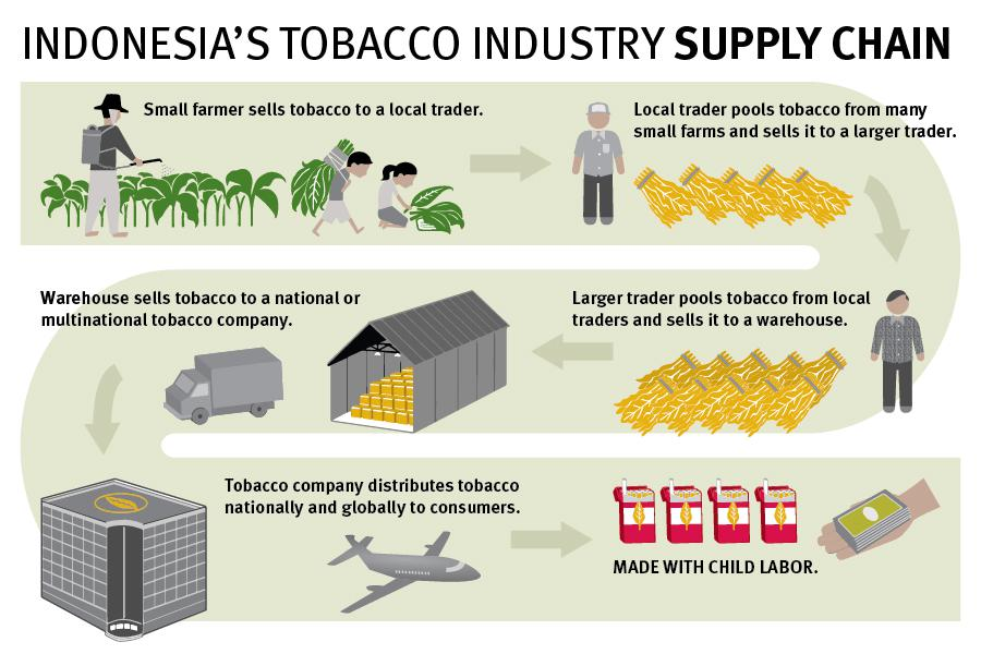 Indonesia's Tobacco Industry Supply Chain