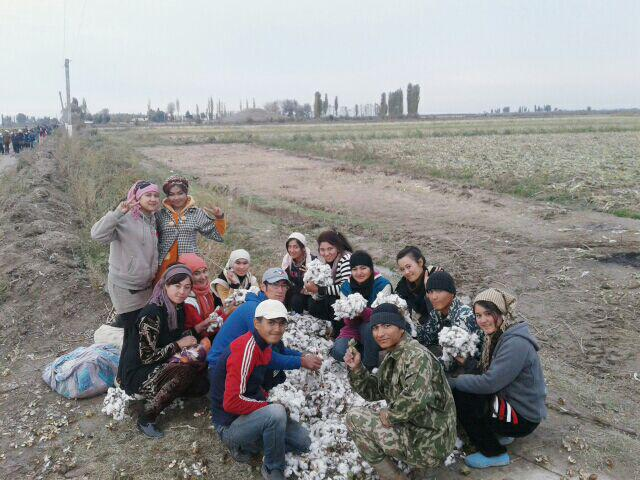 University students continuing to work in the cotton fields into the winter, November 2016, Andijan region.