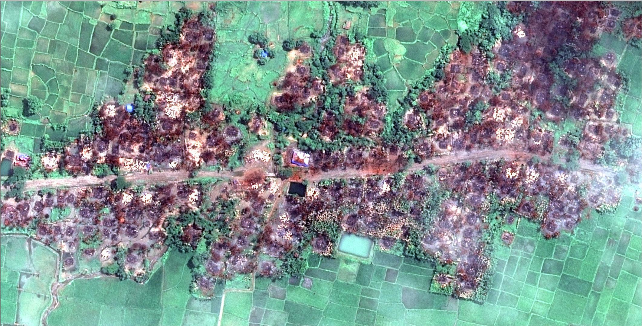 人权观察取得最新卫星照片显示清卡里(Chein Khar Li)全村毁灭。