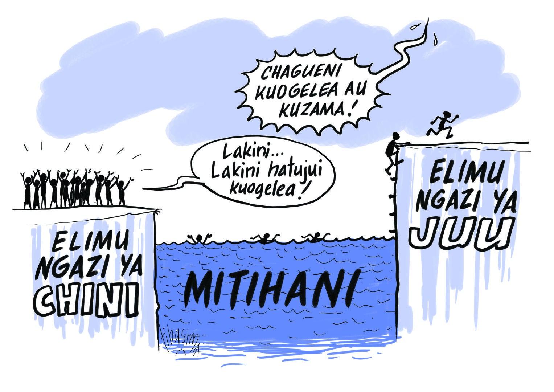 Cartoon for Tanzania Education Report