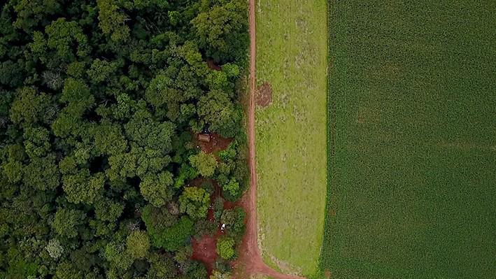 Imagem de drone sobre uma comunidade indígena Guarani-Kaiowá localizada a poucas horas de carro de Campo Grande, capital do estado do Mato Grosso do Sul. A plantação vizinha alterna entre o cultivo de soja e milho.