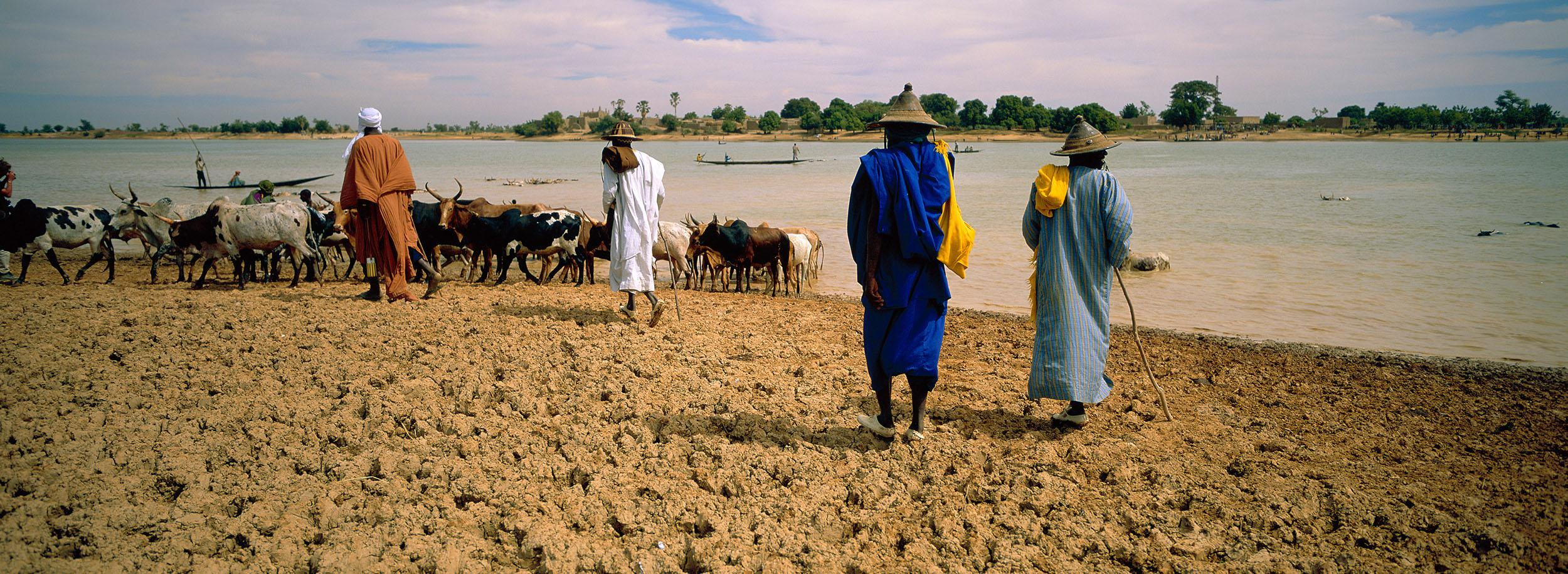 Peuhl animal herders waiting to cross the Bani River, near Sofara, central Mali.  On August 7, 2018, Dozo militia allegedly detained 11 Peuhl traders as they waited to cross the river to go to Sofara market, and later killed them.