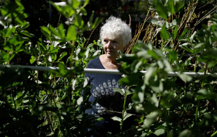 Christine Sheppard, in her backyard in Oceanside, California in March 2018, said she sprayed Roundup for years to control weeds on her coffee farm in Hawaii. In 2003, she was diagnosed with non-Hodgkin's lymphoma, which is now in remission but the cancer treatment causes her severe pain in her hands and legs.