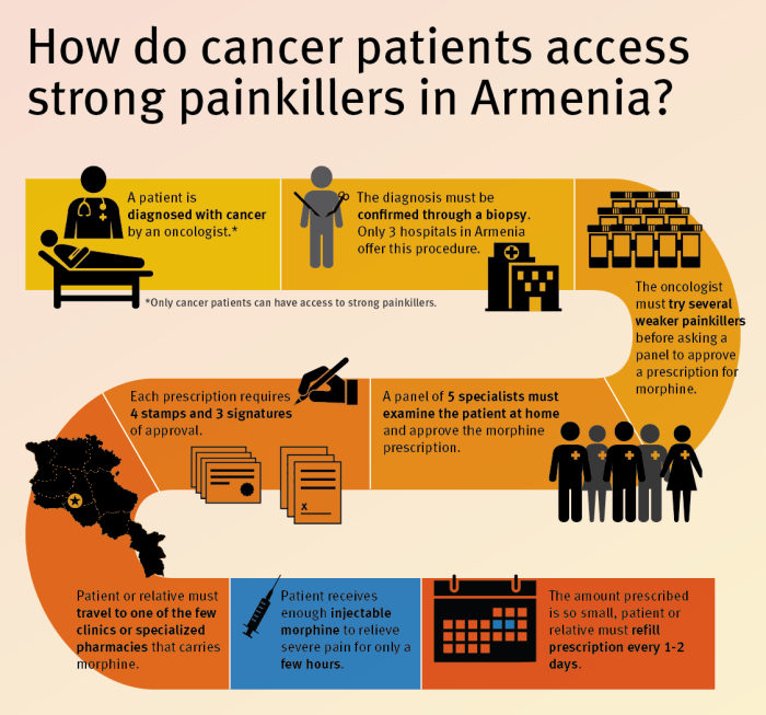 Roadblocks to Pain Relief in Armenia