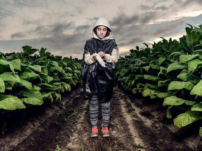 16-year-old tobacco worker