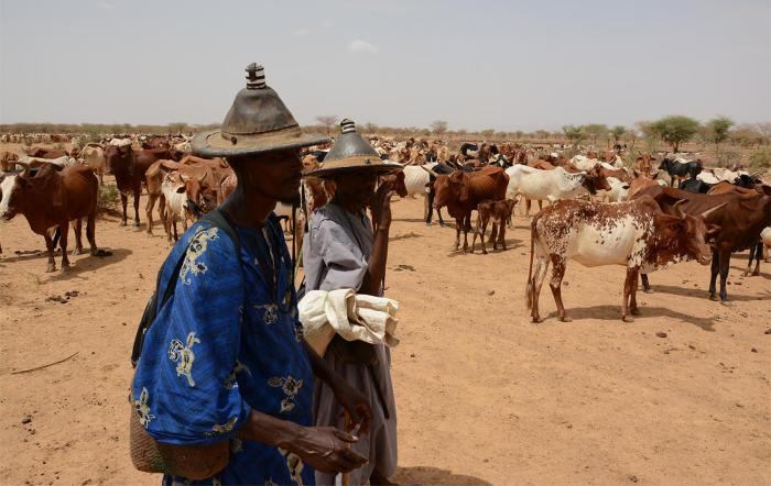 Cattle herders from the Peuhl ethnic group just south of Douentza, Mali, June 2016.  Bandits frequently robbed animal herders and traders in central and northern Mali throughout 2016.