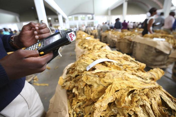 A buyer logs data on the first day of the 2017 tobacco selling season in Harare, Zimbabwe.