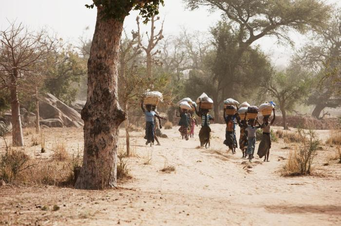 Dogon women bring their wares to market in a Dogon village, Mopti region, central Mali. Access to markets by traders of different ethnic groups has been undermined by attacks carried out by Islamist armed groups and ethnic self-defense groups.