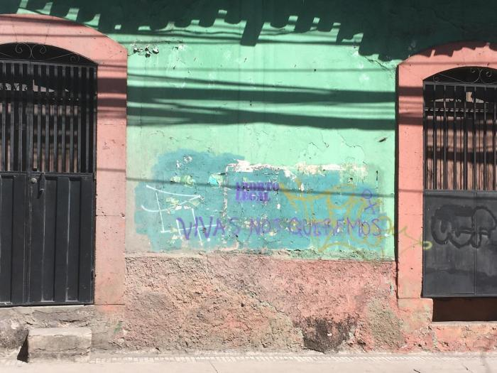 "Graffiti promoting legal abortion and women's rights on a street in central Tegucigalpa, Honduras where public protests and demonstrations often take place. Vivas nos queremos (""We want to live"") is a slogan used in campaigns across Latin America."