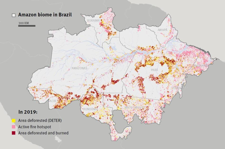Deforestation and active fire hotspots in the Brazilian Amazon Biome, 2019