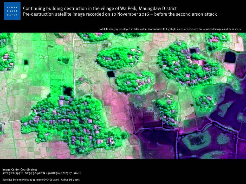 Continuing building destruction in the village of Wa Peik, Maungdaw District. Pre-destruction satellite image recorded on 10 November 2016 – before the second arson attack.