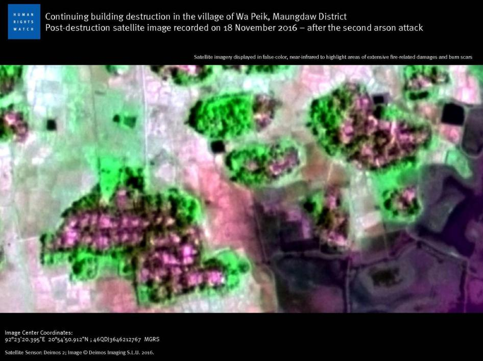 Continuing building destruction in the village of Wa Peik, Maungdaw District. Post-destruction satellite image recorded on 18 November 2016 – after the second arson attack.