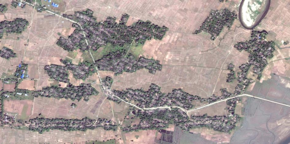 Satellite imagery recorded before and after the clearing of the destroyed village of Myin Hlut. (Before image)