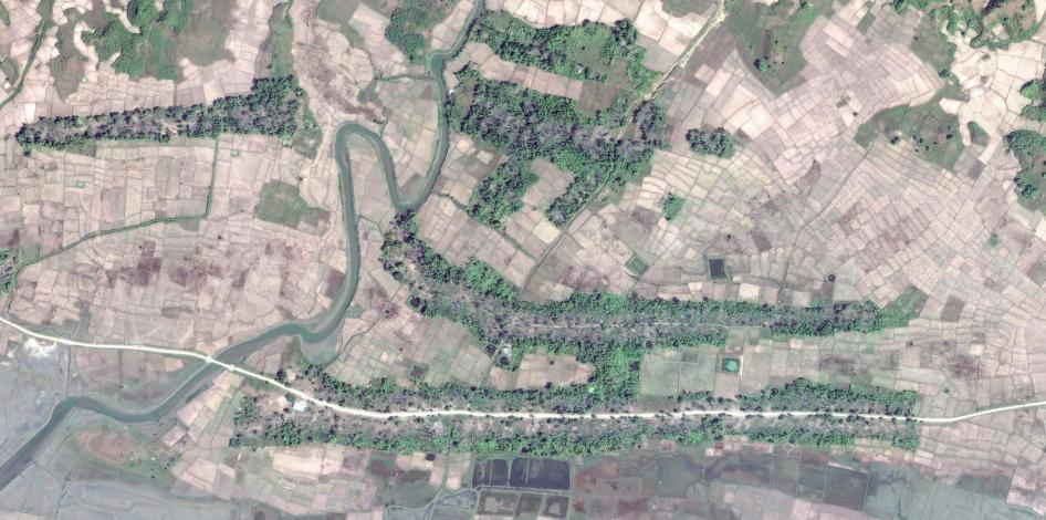 Satellite imagery recorded before the clearing of the destroyed village of Gwa Son.