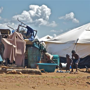 World Report 2015: Zimbabwe