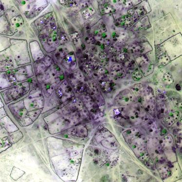 Sudan: Sondereinheit wütet in Darfur