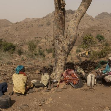 Sudan: Special Force Rampages in Darfur