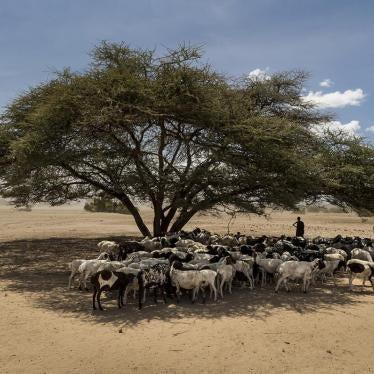联合国:人权为气候协定关键