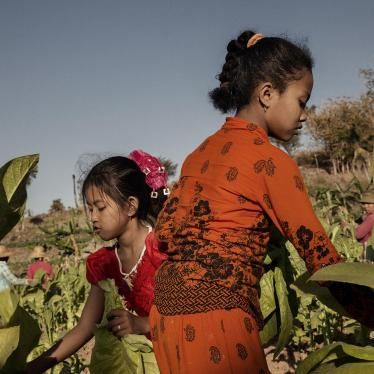 The Netherlands's Plan to Cut Child Labor Out of Products