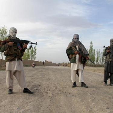 Afghanistan's Taliban Asserts Infrastructure Protection Role