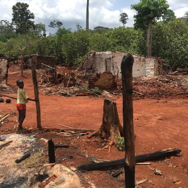 Côte d'Ivoire: Arbitrary Evictions in Protected Forests