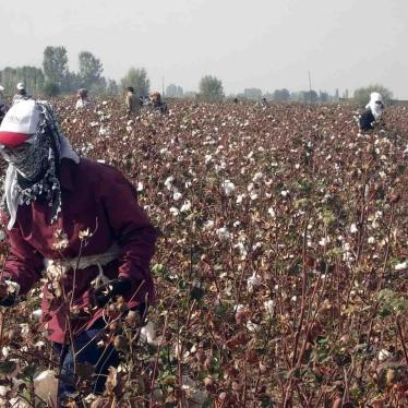 European Parliament May Rubber Stamp Forced Labor in Uzbekistan