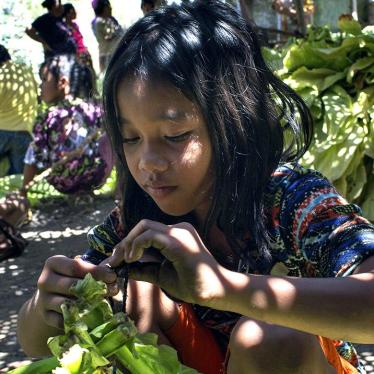 Keep Children Out of Indonesia's Tobacco Fields
