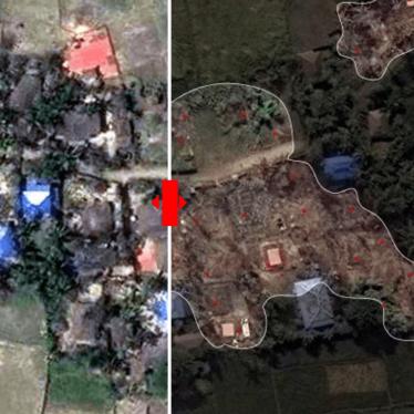 Burma: Massive Destruction in Rohingya Villages