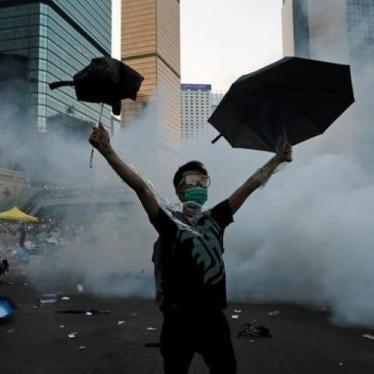 香港:特首应捍卫自治地位