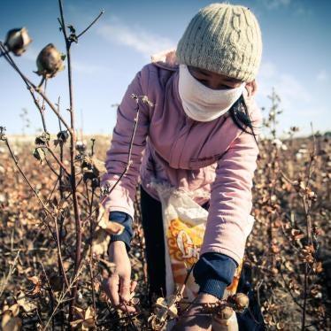 Uzbekistán: Trabajo forzoso vinculado al Banco Mundial