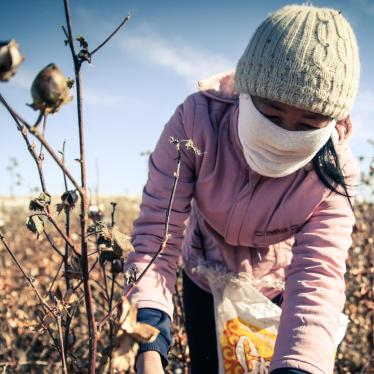 Uzbekistan: Forced Labor Linked to World Bank