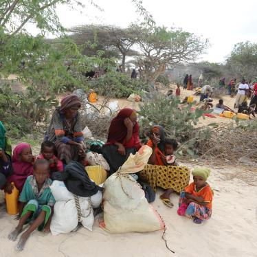 Somalia: Al-Shabab Forces Burn Villages