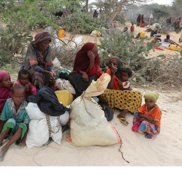 Somalie : Les forces Al-Chabab ont incendié des villages