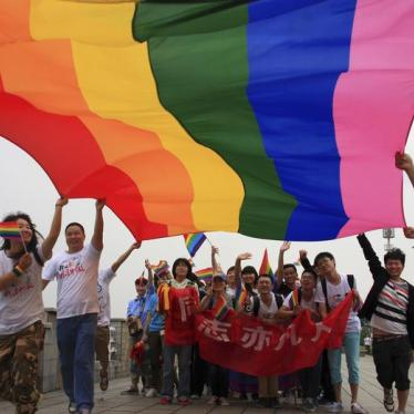 Activists raise a rainbow flag as they march during a demonstration to mark the International Day Against Homophobia and Transphobia in Changsha, Hunan province May 17, 2013.