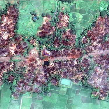 ビルマ:大規模火災を示す新たな衛星写真