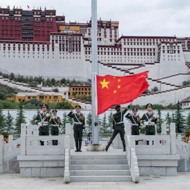 提交中国《消除种族歧视公约》审议文件