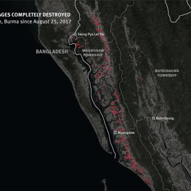 Burma: Satellite Imagery Shows Mass Destruction