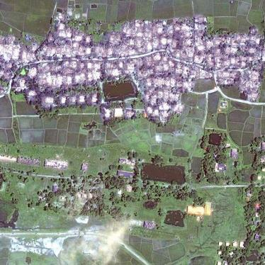 Birmanie : De nouvelles images satellite révèlent la destruction massive de villages rohingyas