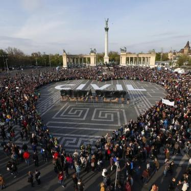 """We stand in solidarity with civil society in Hungary"""