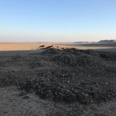 Kurdistan Regional Government: Allegations of Mass Executions