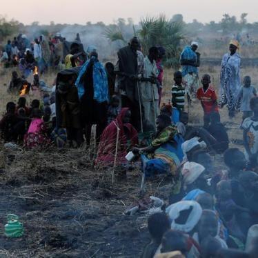 南苏丹侵权者面临压力