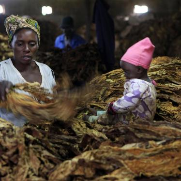 Witness: Tobacco Farmers Kept in the Dark