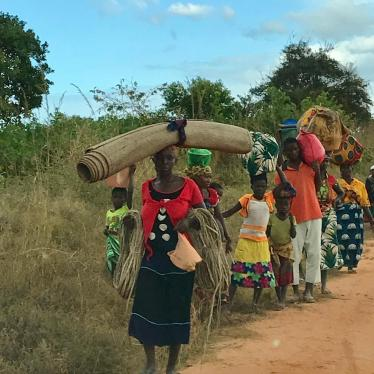 Mozambique: Armed Groups Burn Villages