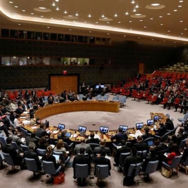 South Africa Secures Seat on UN Security Council for Third Time
