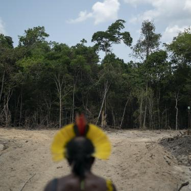 Krimej indigenous Chief Kadjyre Kayapo, looks out at a path created by loggers, in Altamira, Para state, Brazil, Saturday, Aug. 31, 2019.
